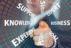PARAGON Business Consultants Knowledge Business Experience Expert Support